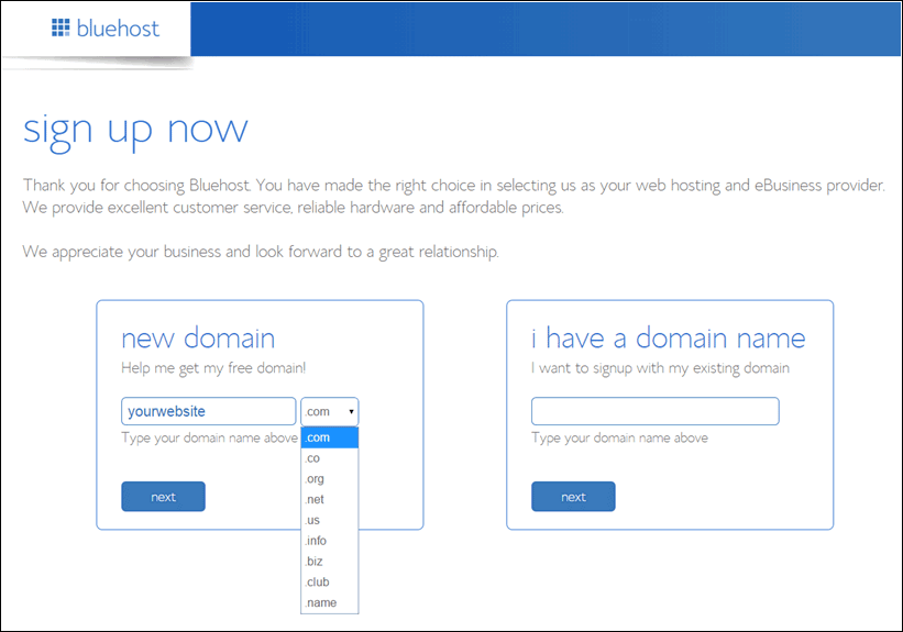 3-bluehost-new-domain